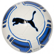 Puma Evo Force Bal