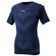 Puma Evo Techical Tee